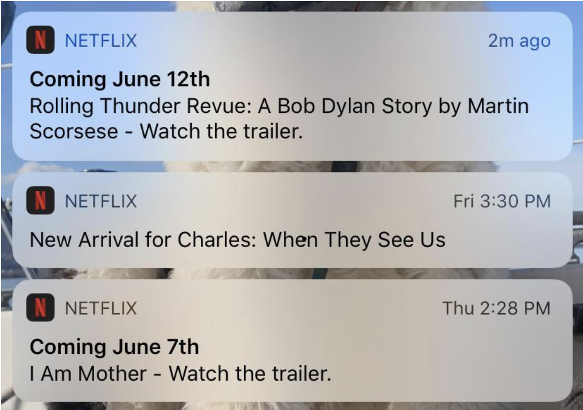 Netflix Mobile App Push Notifications